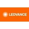 Ledvacne